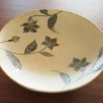 【食器集め2015】初の益子焼絵付け皿を含めて全部一挙紹介!