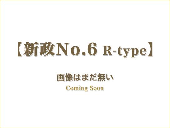 新政No.6 R-type 特別純米/新政酒造(秋田)