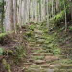大日越(熊野古道)をナメるなよ!歩く距離は短いけど難易度高し