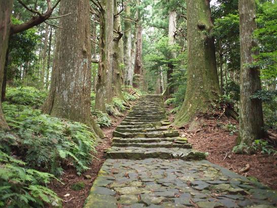 熊野古道 大門坂コース