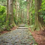 大門坂を歩いて那智大社参詣!勝浦から行くには絶好の熊野古道コース