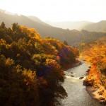 御岳渓谷で紅葉ハイキング!沢井駅から2時間かけて秋の遊歩道をゆく