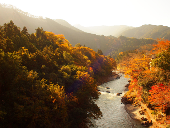 御岳渓谷/東京