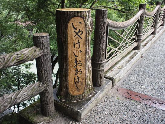 祖谷渓大橋